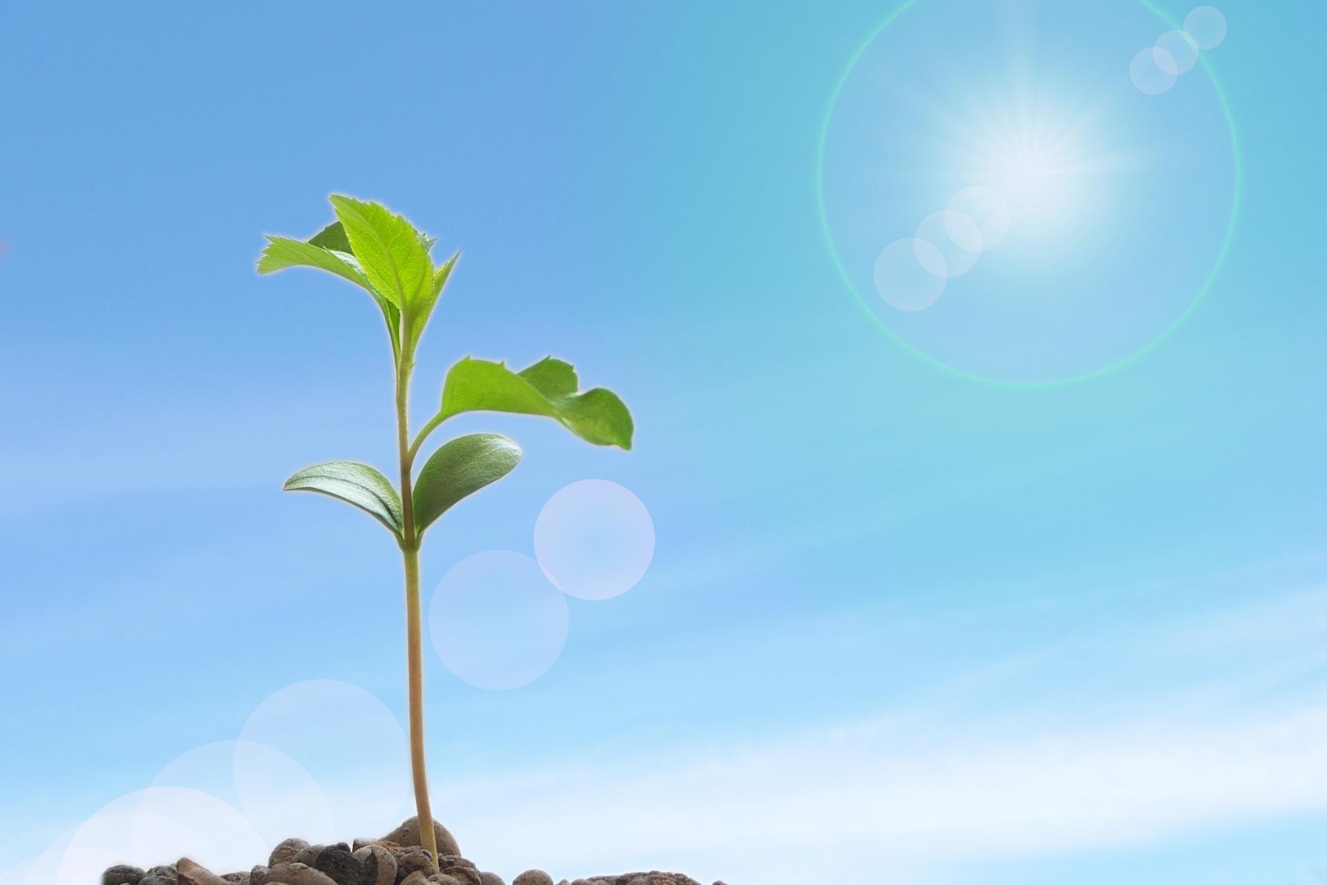 業務改善をする意味は?得られる効果や重要性が知りたい!_効果
