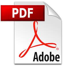 pdfファイルが開きます